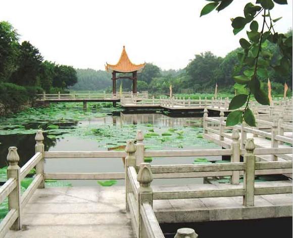广东省 佛山市 >> 高明塘伙旅游生态园  点击查看原图