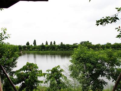 广东永乐绿色生态度假区(南沙)图片