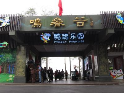 银旅通・乐境游促销产品图片