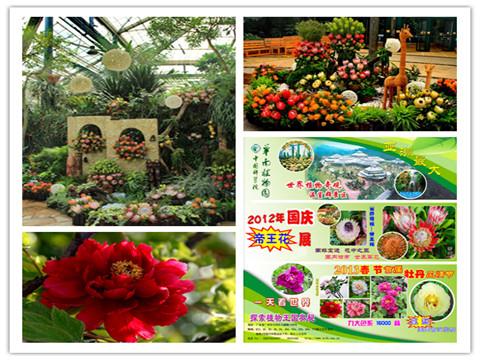 2017年银旅通*植物园年卡(臻爱卡)图片