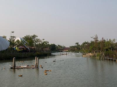 南沙湿地大门票+水鸟世界大门票图片