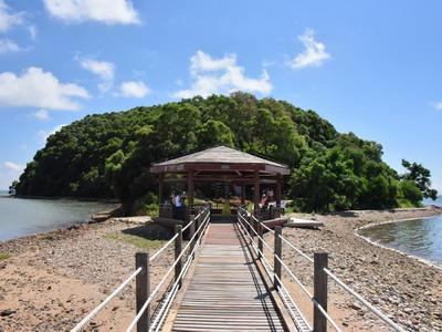 阳江海陵岛红树林国家湿地公园图片