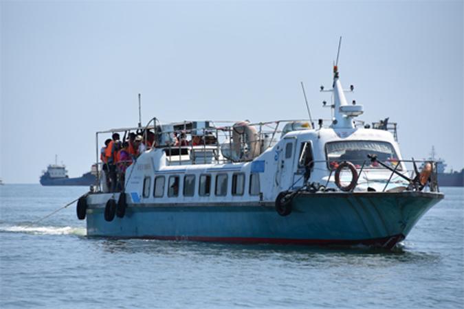 阳江闸坡新圣洋渔家乐图片